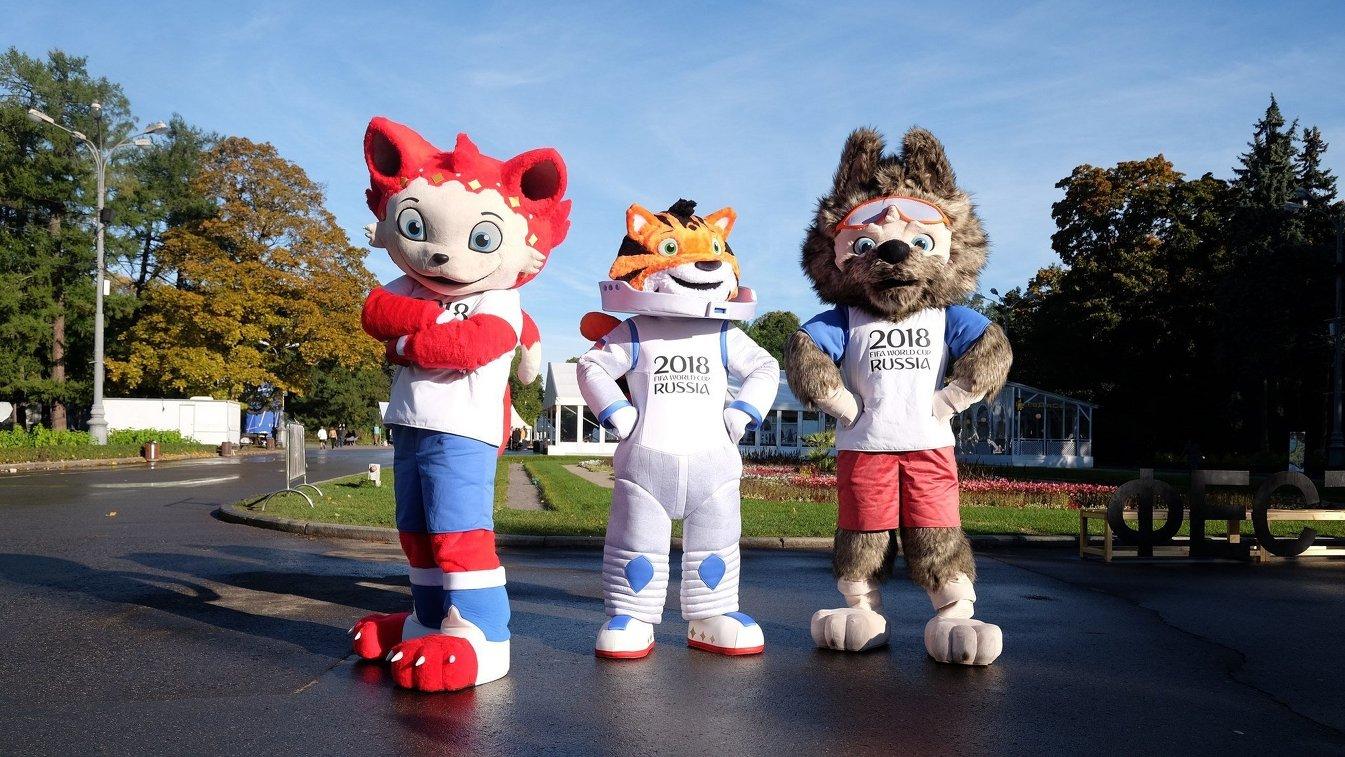 Кот, Амурский Тигр и Волк (слева направо)