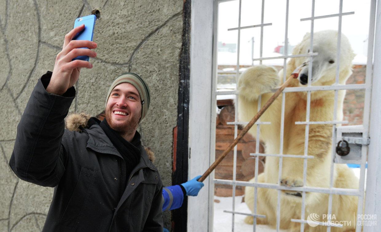 Хоккеисты Трактора навестили живой талисман команды - белого медведя Алтына