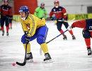 Игровой момент матча Швеция - Норвегия