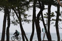 Мужчина на велосипеде возле пляжа Gyeongpo Beach в городе Каннын, Республика Корея