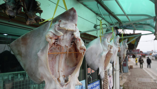 Рынок морепродуктов возле пляжа Gyeongpo Beach в городе Каннын, Республика Корея