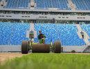 Укладка нового газона на стадионе Санкт-Петербург Арена