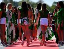 Грид-герлз перед стартом Гран-при Италии