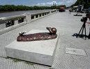 Статуя нападающего Барселоны и сборной Аргентины по футболу Лионеля Месси, установленная в Буэнос-Айресе, после акта вандализма