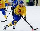 Игрок сборной Швеции Эрик Петтерссон