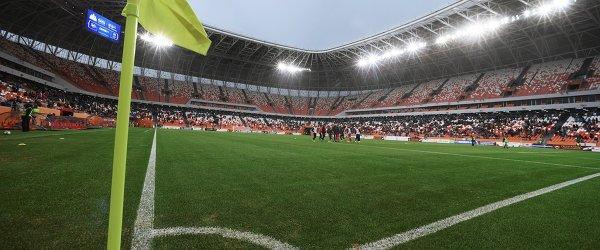 Поле на стадионе Мордовия Арена