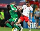 Полузащитник сборной Сенегала Альфред Ндиайе и нападающий сборной Польши Роберт Левандовский (Слева направо)