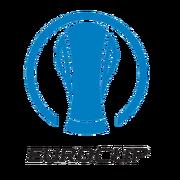 Эмблема Кубок Европы