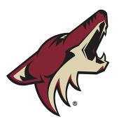 Эмблема Финикс НХЛ