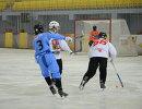 Игровой момент матча ЧМ по по хоккею с мячом между командами Чехии и Сомали