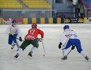 Игровой момент матча ЧМ по по хоккею с мячом между командами Венгрии и Монголии