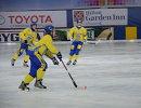 Хоккеисты сборной Украины