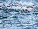 Спортсмены во время соревнований по плаванию на открытой воде на 5 км