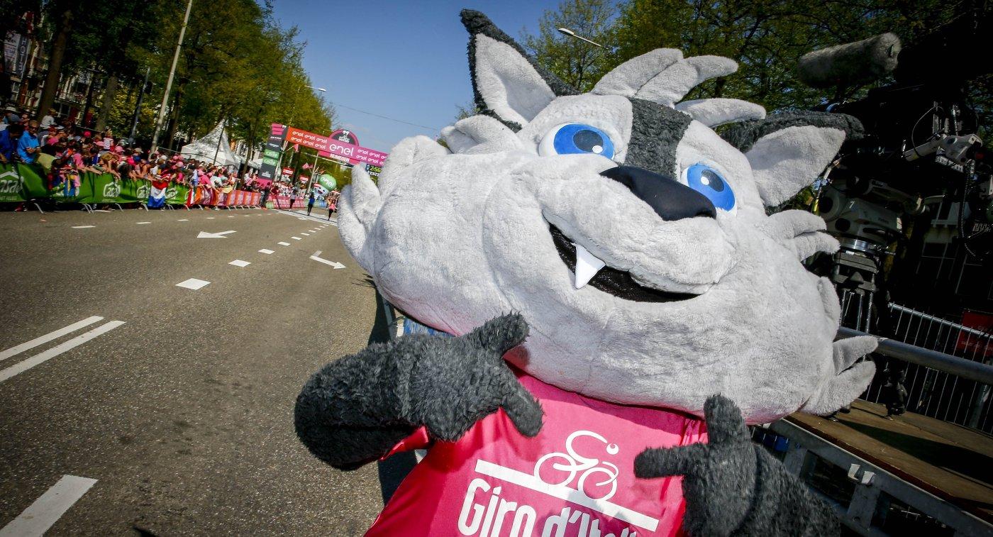 Маскот Джиро д'Италия волк Лупо