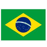 Бразилия (флаг)